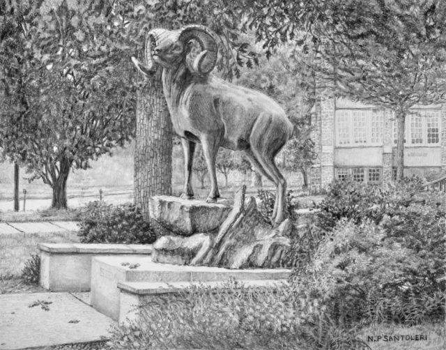 """Standing Guard"" (West Chester University Golden Ram) pencil drawing by Nick Santoleri"