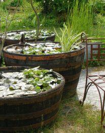 petits bassins hors sol