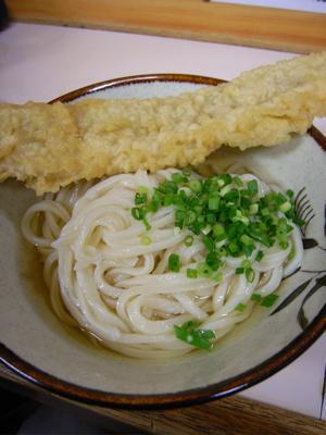松家製麺所:かけうどん(細いんの大、ひやひや)+穴子天