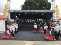 Festival Artistico Colegio San Via (17)