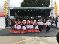 Festival Artistico Colegio San Via (18)