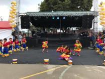 Festival Artistico Colegio San Via (4)