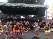 Festival Artistico Colegio San Via (49)