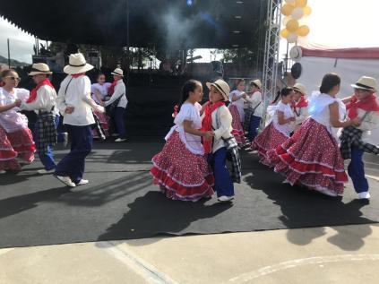 Festival Artistico Colegio San Via (81)