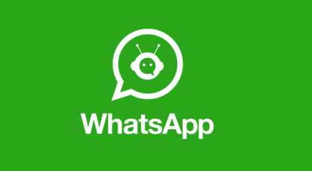 sanver chatbot whatsapp