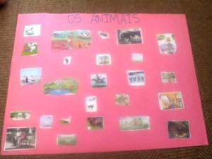projeto animais (2)