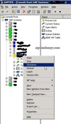 how to shutdown SAP on Windows