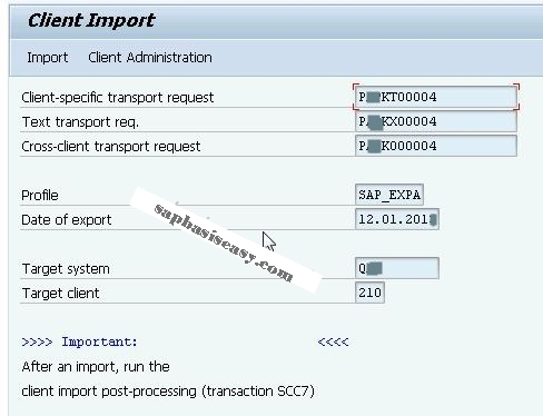 How to import SAP Client