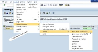 Monitor SAP message server