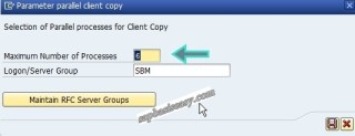 Parallel process in SAP client deletion