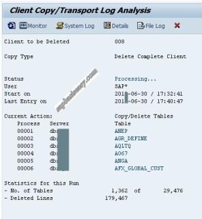 Detailed SAP client deletion log