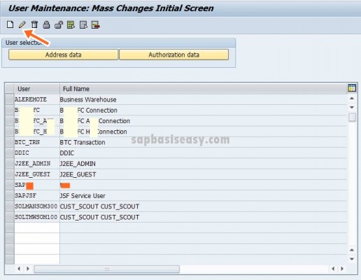 mass-change-sap-users-5