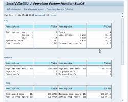 Monitoring SAP Operating System