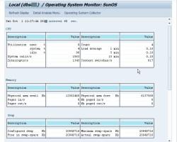 Monitoring SAP Operating System