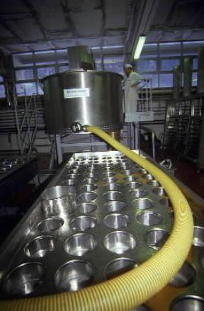 Italia . Lavorazione industriale dei formaggi in un caseificio piemontese.De Agostini Picture Library/A. De Gregorio