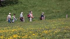 Un gruppo di persone attraversa un campo durante un'escursione
