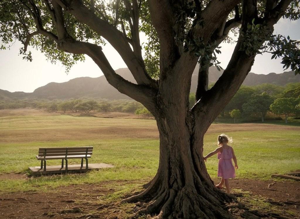 L'albero, libro di Pietro Greco