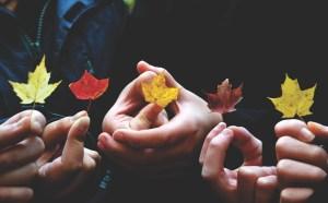nterpretare foglie in autunno