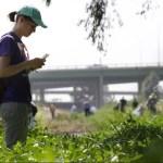 Una ragazza fotografa con lo smartphone delle specie vegetali nell'ambito della Nature city challenge