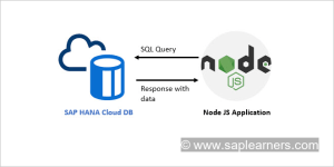 SAP HANA Cloud Node JS Client