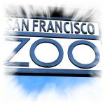 Sapnuoti žvėryną, zoologijos sodą