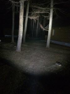 スルーナイトTN12を一番明るくすると暗闇の森の中でも100m先まで見える