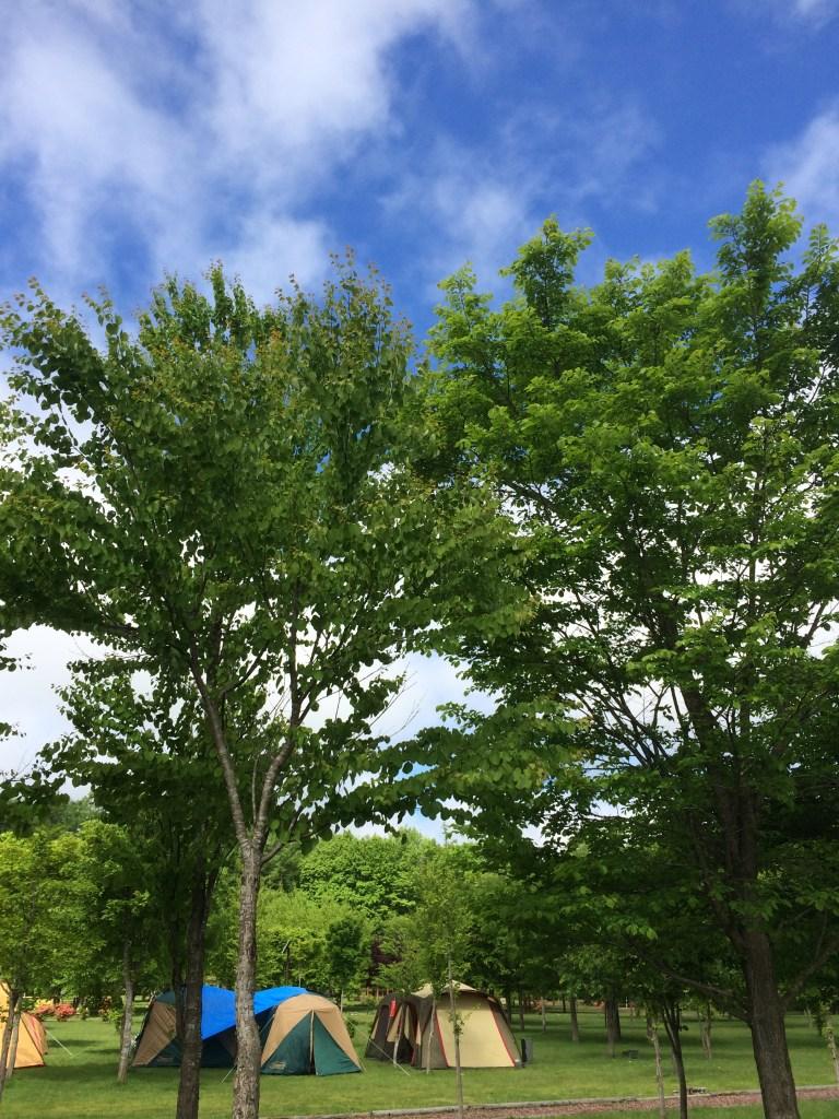 北海道安平町鹿公園のキャンプ場に来てみました!