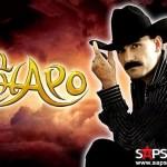 El Chapo de Sinaloa - Le Hace Falta Un Beso (versión banda)