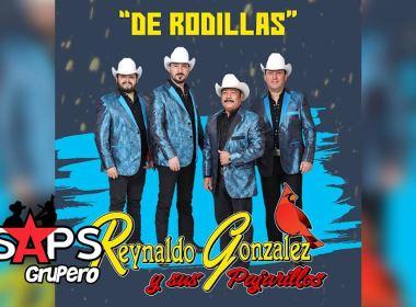Letra De Rodillas – Reynaldo Gonzales Y Sus Pajarillos