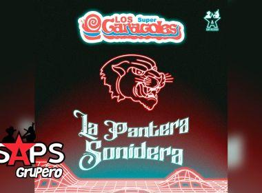 Letra La Pantera Sonidera – Los Super Caracoles