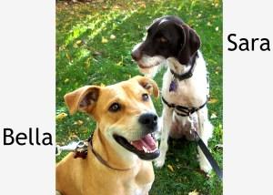 Bella & Sara