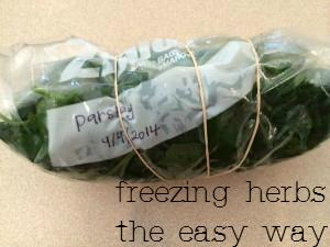 freezing herbs
