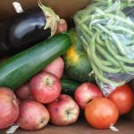 now's the time to sign-up for a CSA + central Indiana CSAs