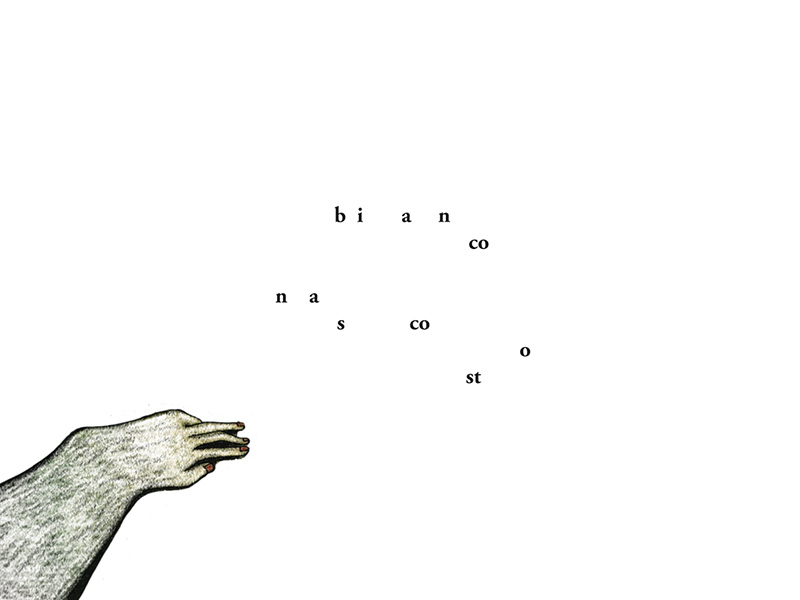 bianco nascosto disegni di Sara Garagnani