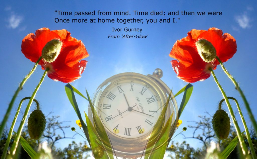 doubled poppy with gold watch faded with words but no weblink