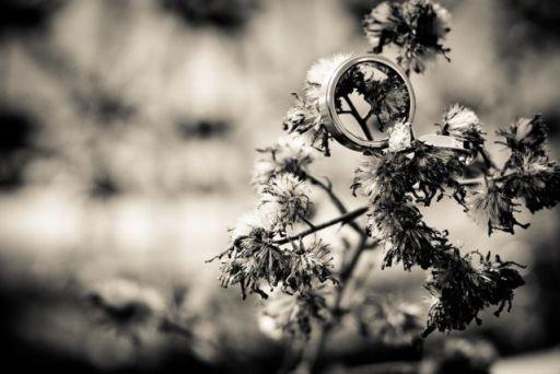 Ring on Branch