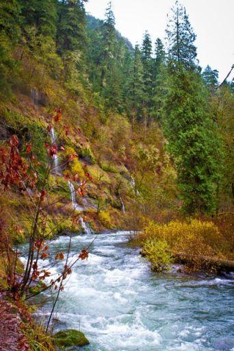 River Cherish