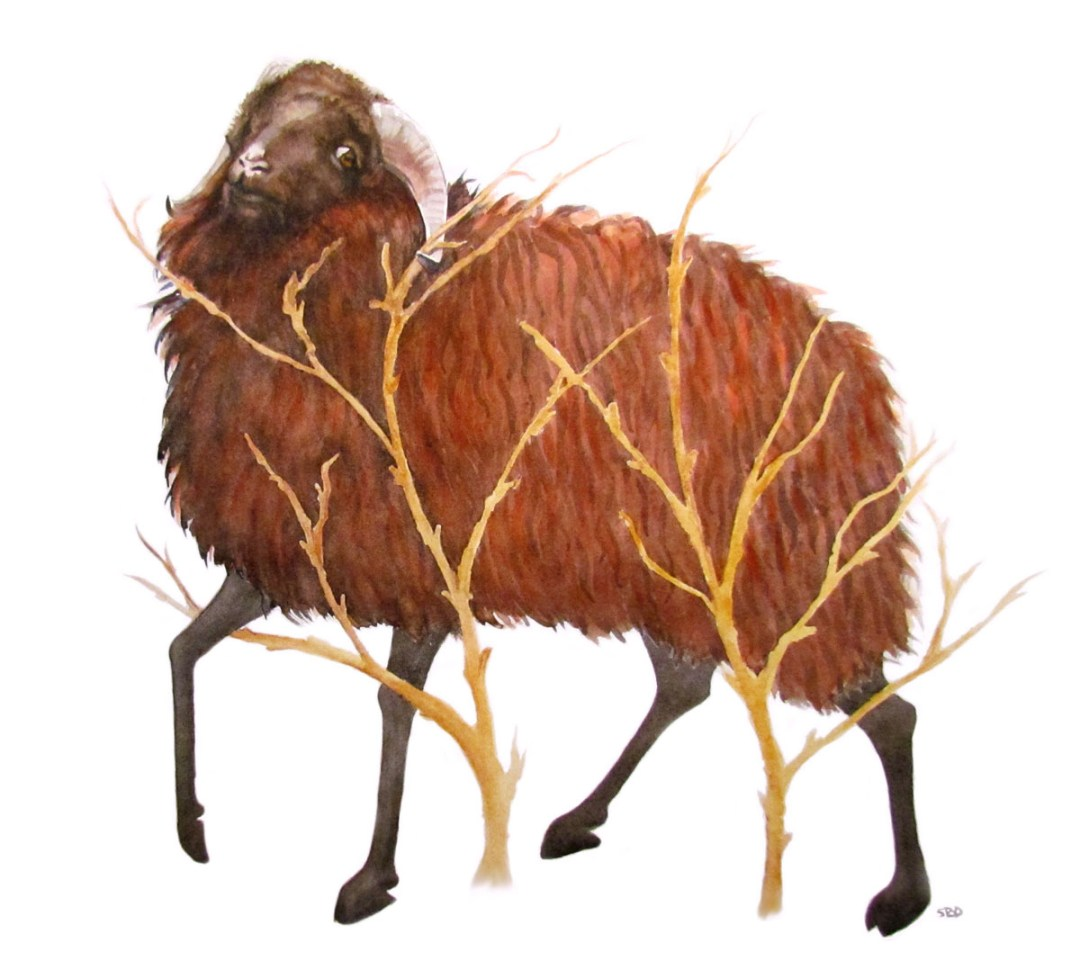 Abraham Looked at up and saw a Ram in a Thicket