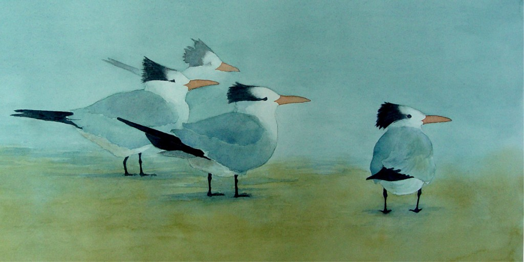 Terns-In-the-Mist