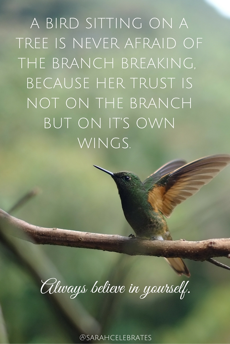 A bird sitting on a tree is never afraid of the branch breaking, because her trust is not on the branch but on it's own wings. #MondayMotivation