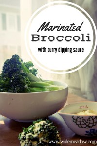 Marinated broccoli | A Sarah Special #2usestuesday feature