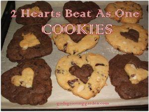 2 hearts cookies | Faves so far at #Pinbellish 42