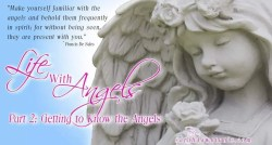Life with Angels 2: Getting to Know the Angels