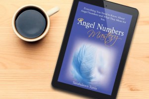 Angel Numbers Book - PDF
