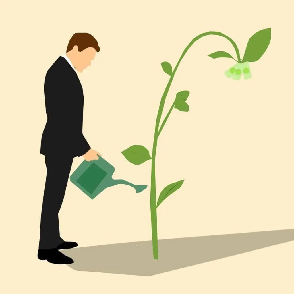 Man watering a plant with money on it. How to manifest intentions: live and act like it has already manifested.