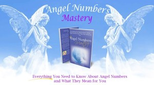 Angel Numbers Book