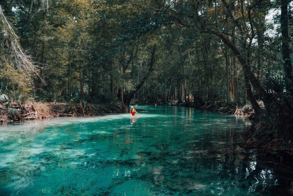 Ginnie Springs | Florida | USA