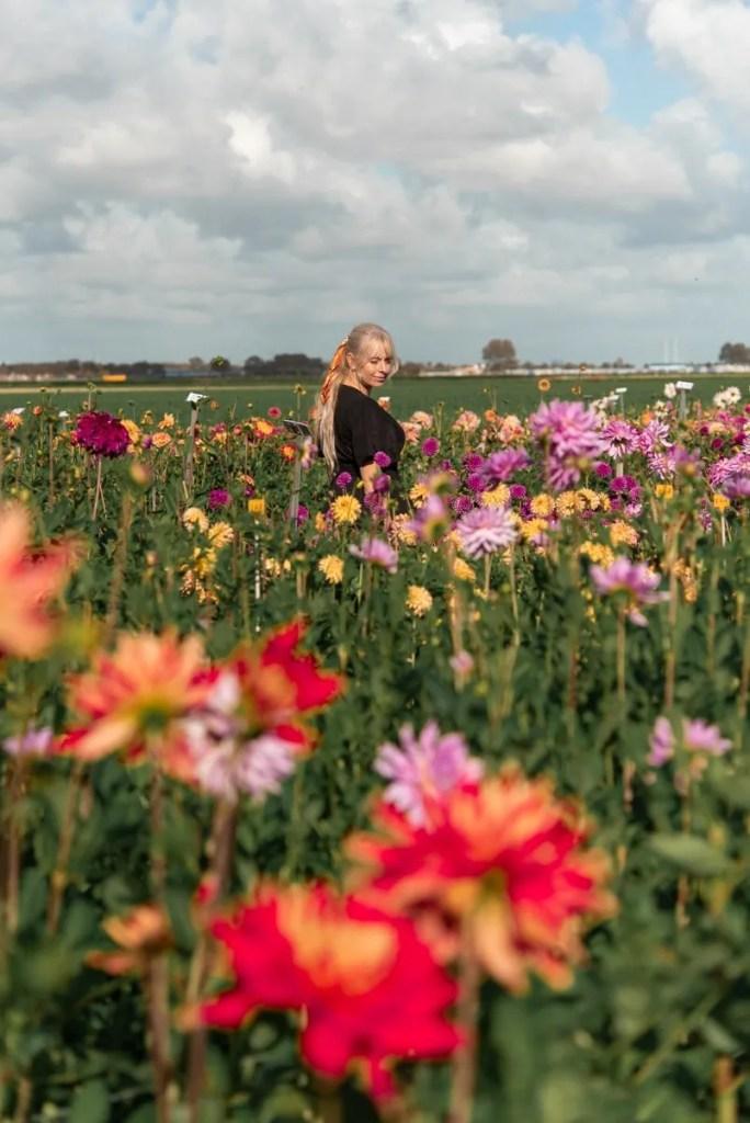 Renzy.nl Noordwijk Nederland