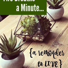 Two Breaths a Minute {A Reminder to LIVE}
