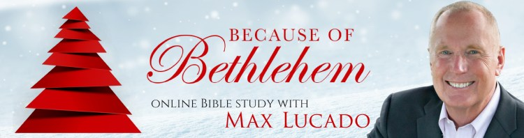 Free online Advent Bible study!